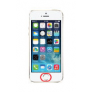 Forfait bouton home Gold iPhone 5S / SE
